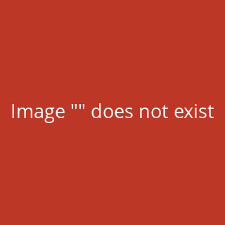 IronMaxx Zorn Pre-Workout Booster - 480g Himbeere