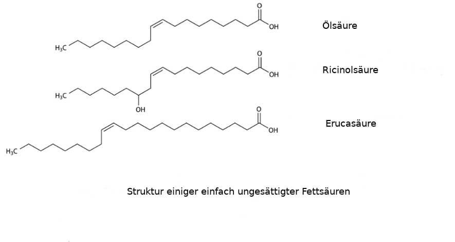 ungesättigte fettsäuren Struktur 2